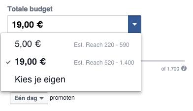 Facebook budget